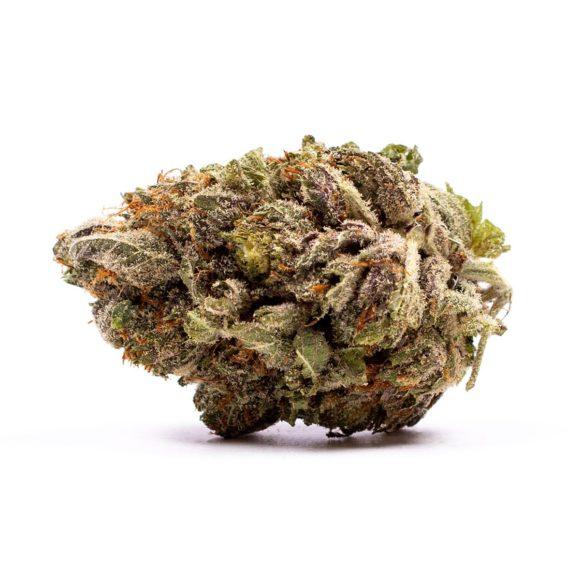 Purple Candy Indica Strain 1