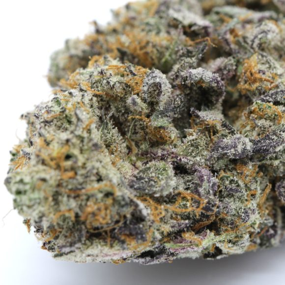 Thin Mint Girl Scout Cookies AAAA M2