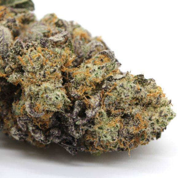 Thin Mint Girl Scout Cookies AAAA M4
