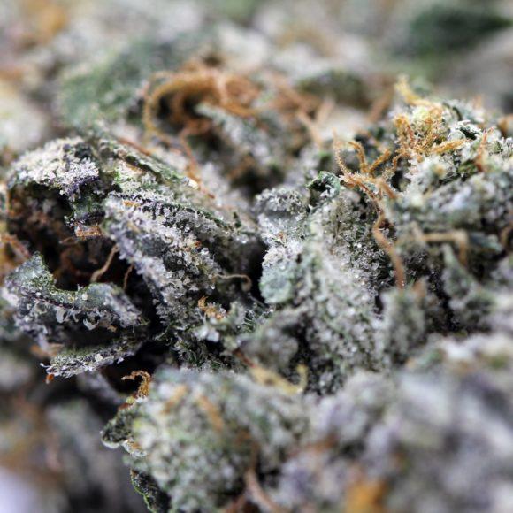 Three Queens Organic AAAA+ Craft Cannabis Macro 3