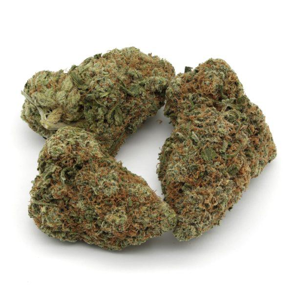 Tropicana-Cookies-Strain-2
