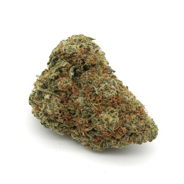 Tropicana-Cookies-Strain-3