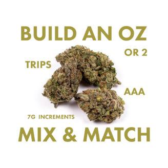 Build an OZ – Mix & Match Trips – AAA