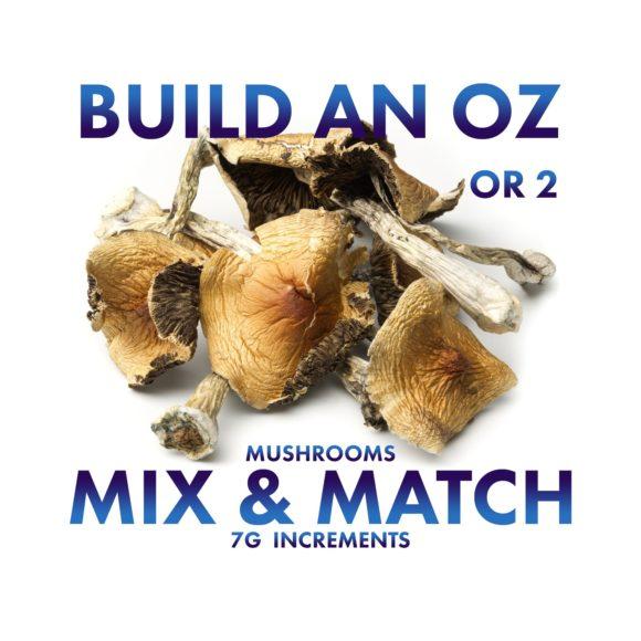 Mix-&-Match-Magic-Mushrooms